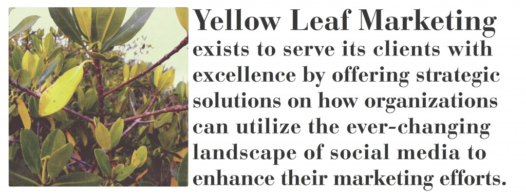 Welcome to Yellow Leaf Marketing